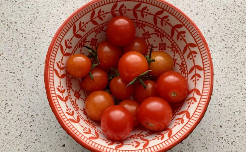 Tomaten kweken uit een plakje tomaat